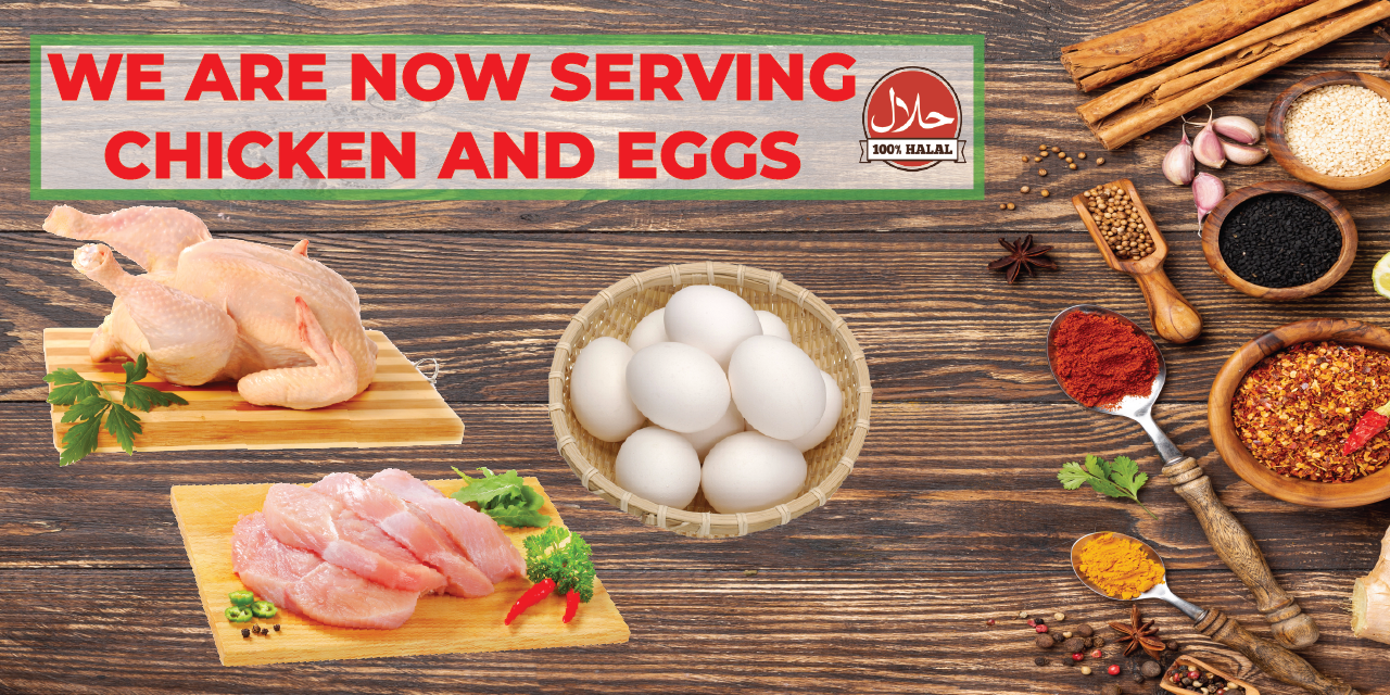 Buy Chicken and Eggs at B2H Online